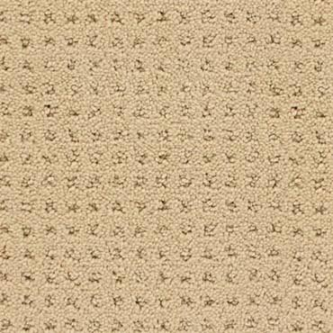 Welcome to georgia quality carpet outlet holly mi for Best quality carpet brands